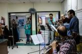 A musical string quartet performs